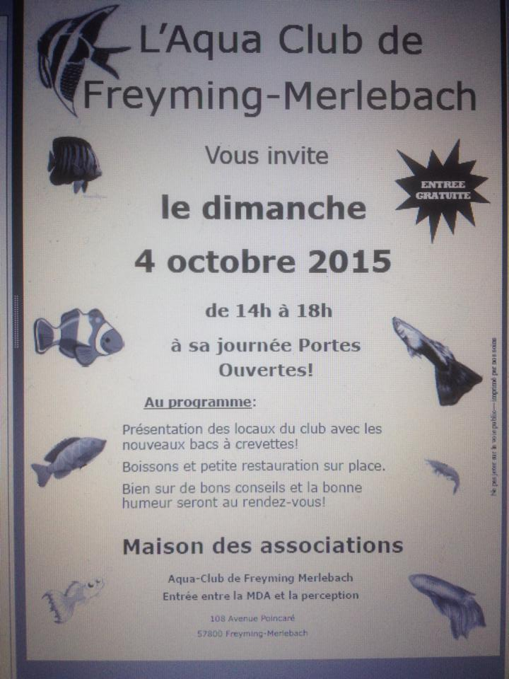 Portes ouvertes au club de Freyming - 04 octobre 2015 Freymi10
