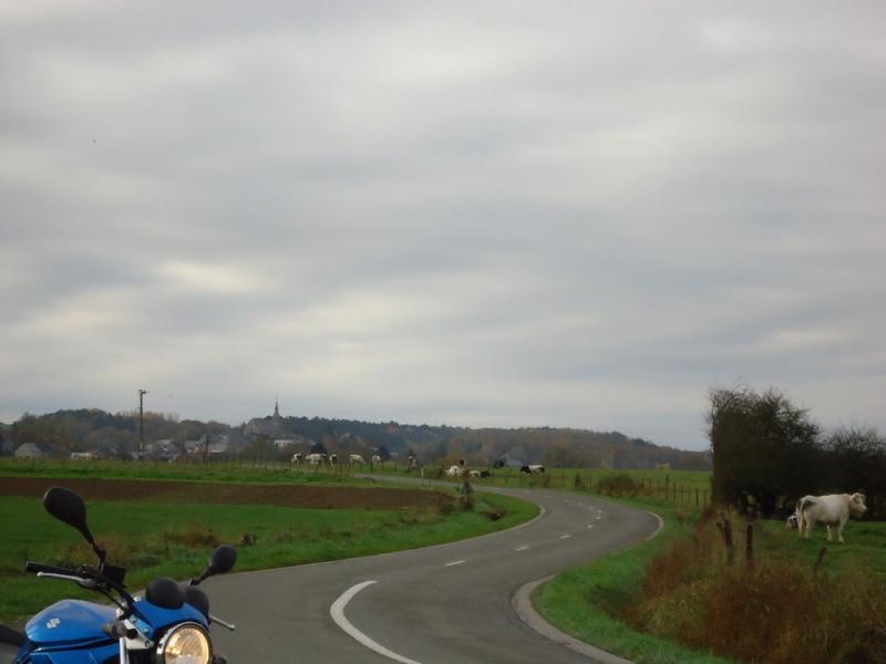 paysage de ma bien belle région Dsc02528