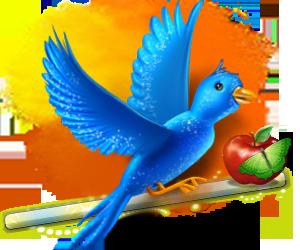 Uccellino per sfondo Animal10