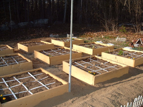 New beds are built... 4-29-010