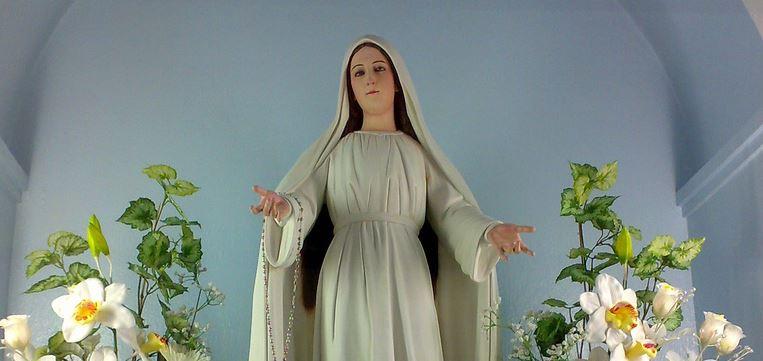LIPA apparition de Notre Dame officiellement déclaré Non-authentique (mise à jour) 2015_010