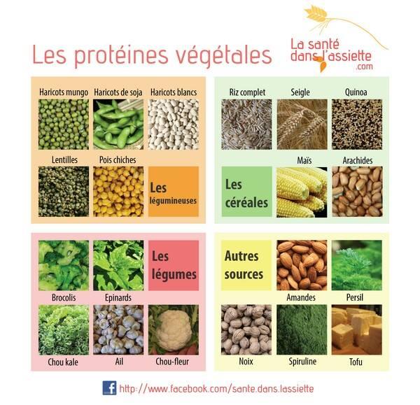 Les meilleures sources de protéines Protyi10