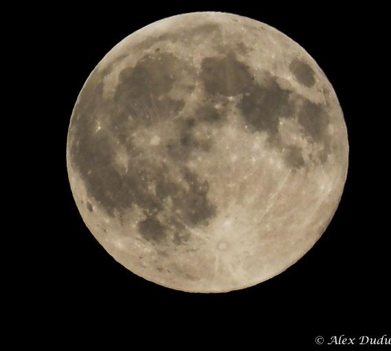 Pleine lune du 29 Août P8290411