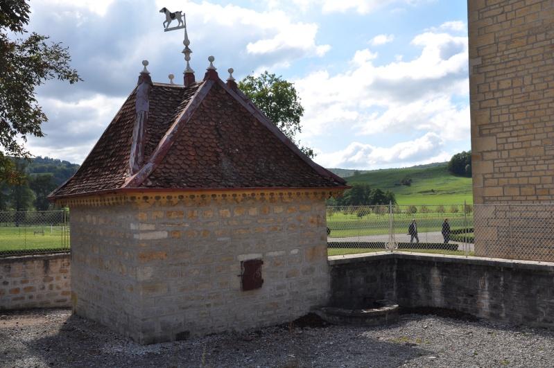 Le château de Cornod et ses jardins Dsc_0615