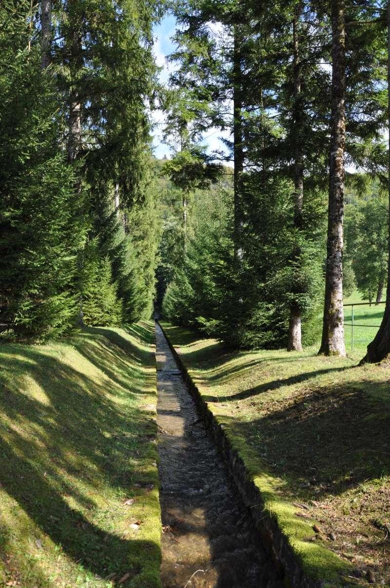 Le château de Cornod et ses jardins Dsc_0622