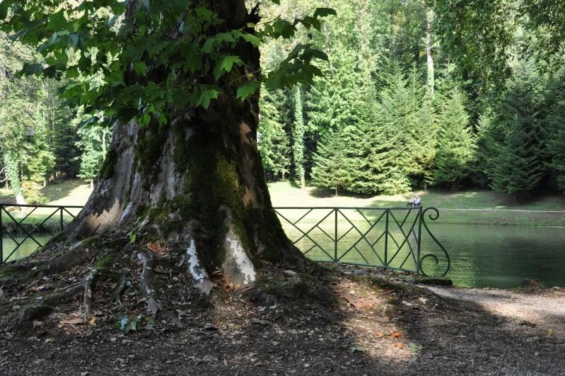 Le château de Cornod et ses jardins Dsc_0623