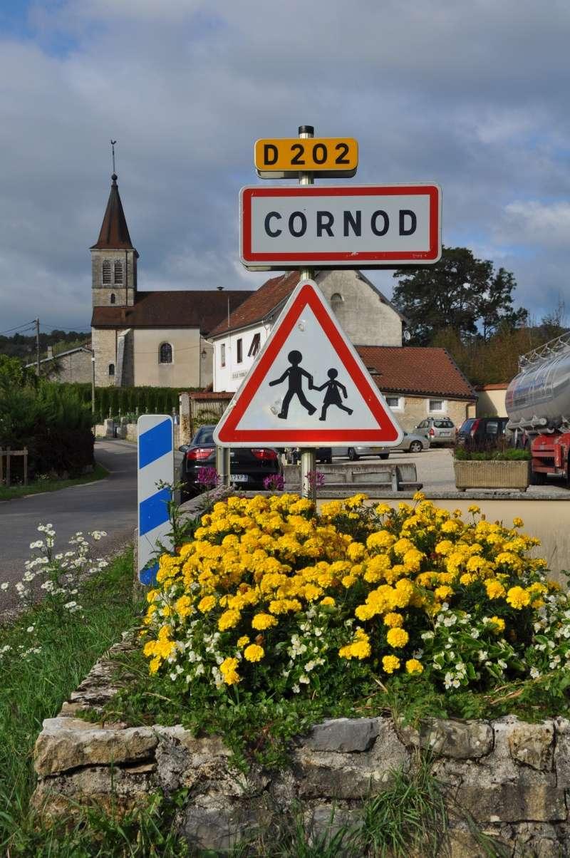 Le château de Cornod et ses jardins Dsc_0810