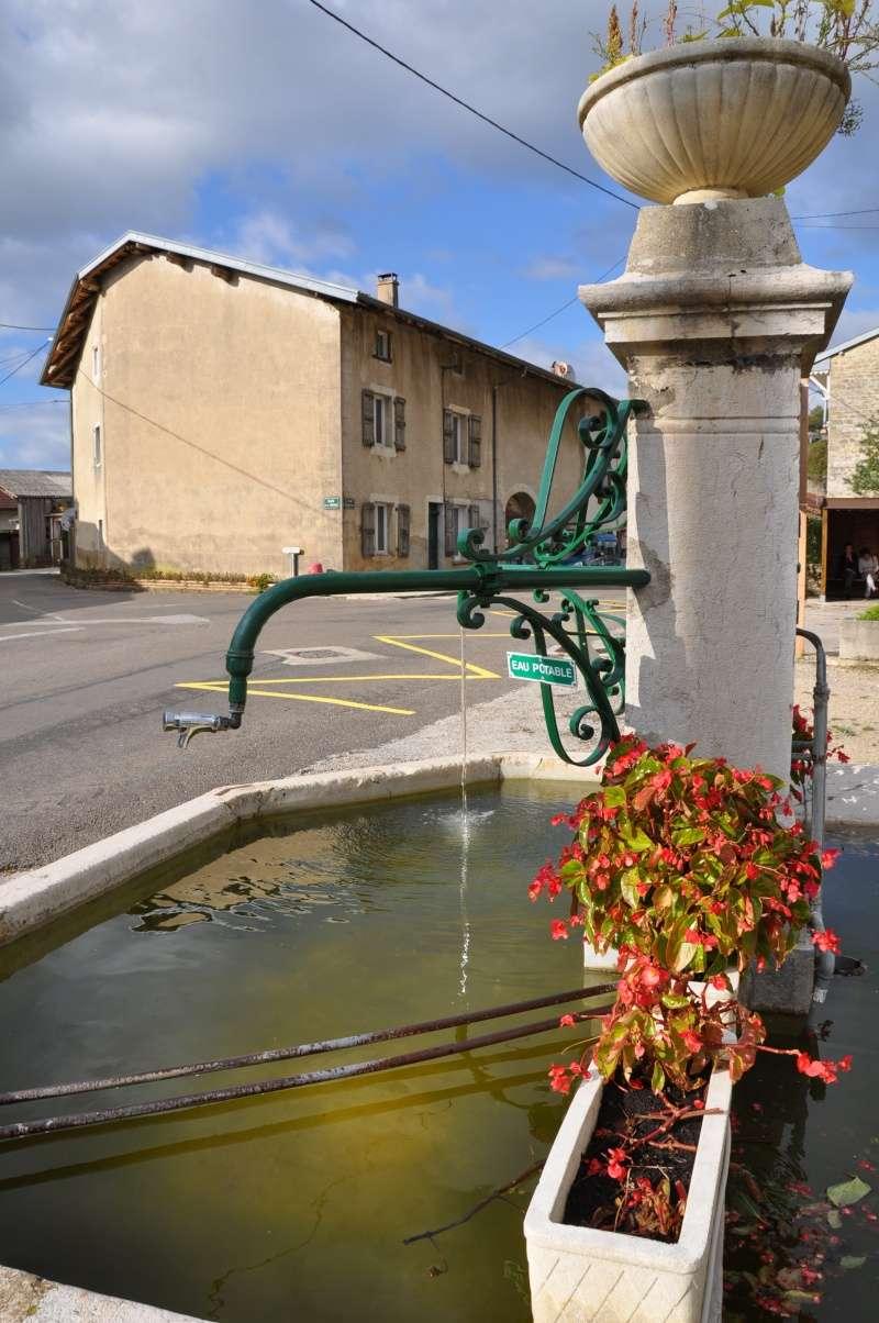 Le château de Cornod et ses jardins Dsc_0813