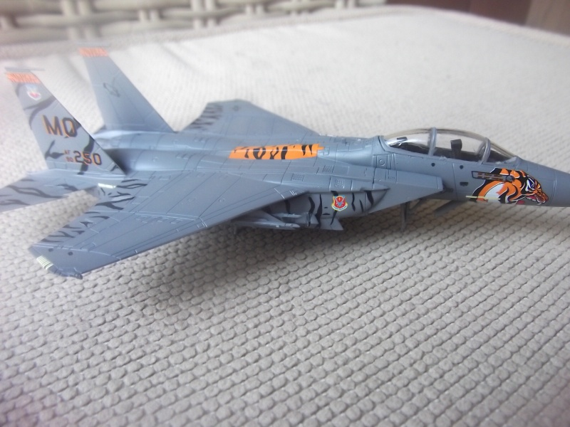 F-15E Strike Eagle Dscf4120