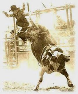 1er WEEK END POUR APPRENDRE à FAIRE du RODEO Bull_r10