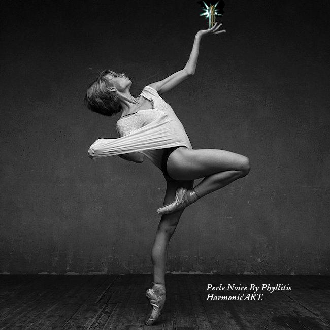 Nouvel Harmonica (Inspiration Yonbberg D1 Perle_11