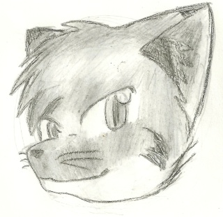 BeDaOrLiSeAr's Attempts: Drawings And Pictures - Page 7 Furona11