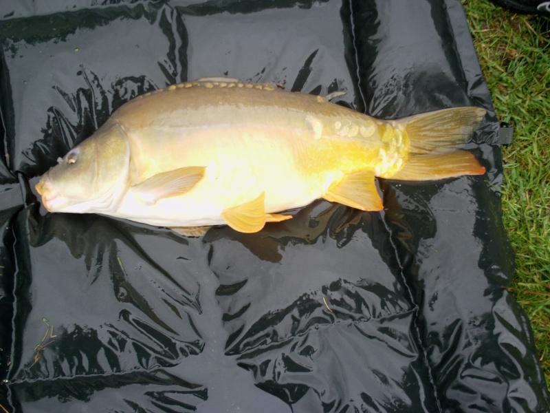 Petite session de 24 h dans un petit étang  Imag3912