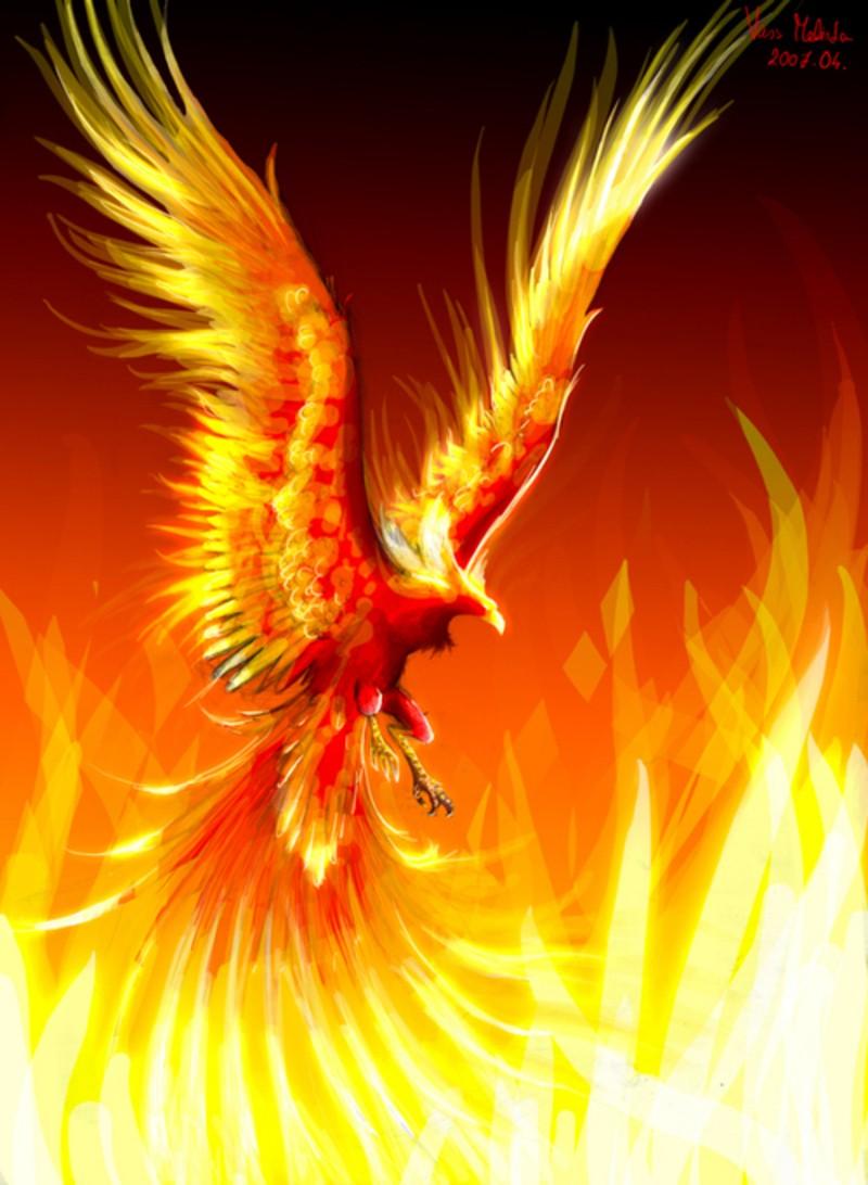 oiseau de feu Feng-h10