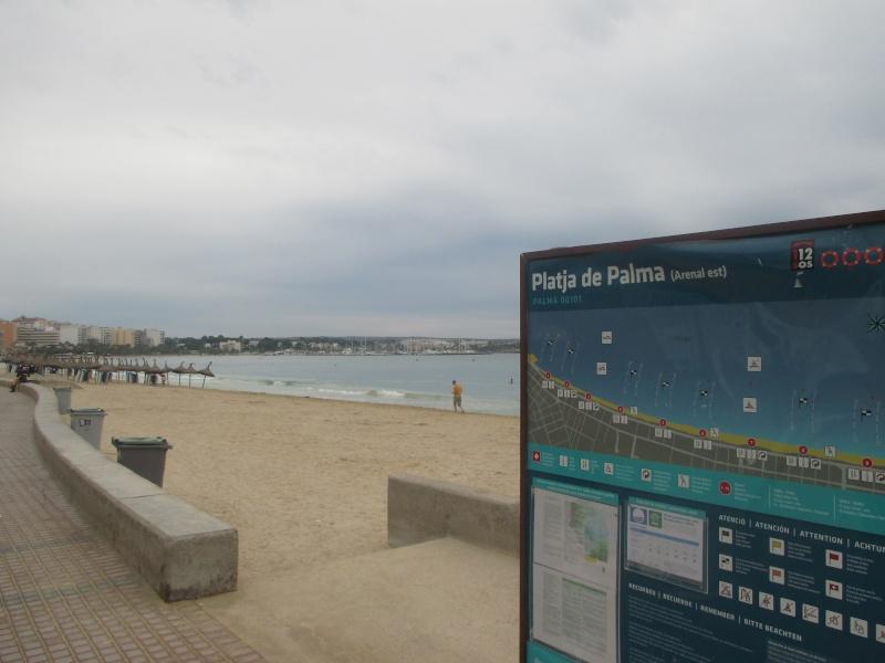 Playa de Palma, with a bit of Arenal. 03310