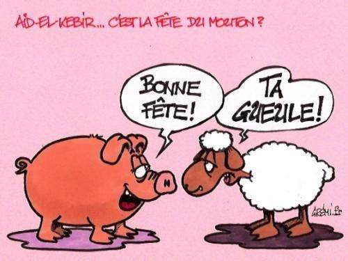 Humour, blagues, infos décalées (Gorafi etc...), photos et vidéos délire ! - Page 5 Mouton10
