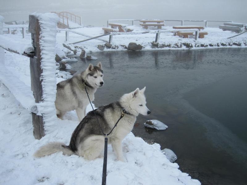 Saskia et Jiro, partie 2 - Page 19 2012