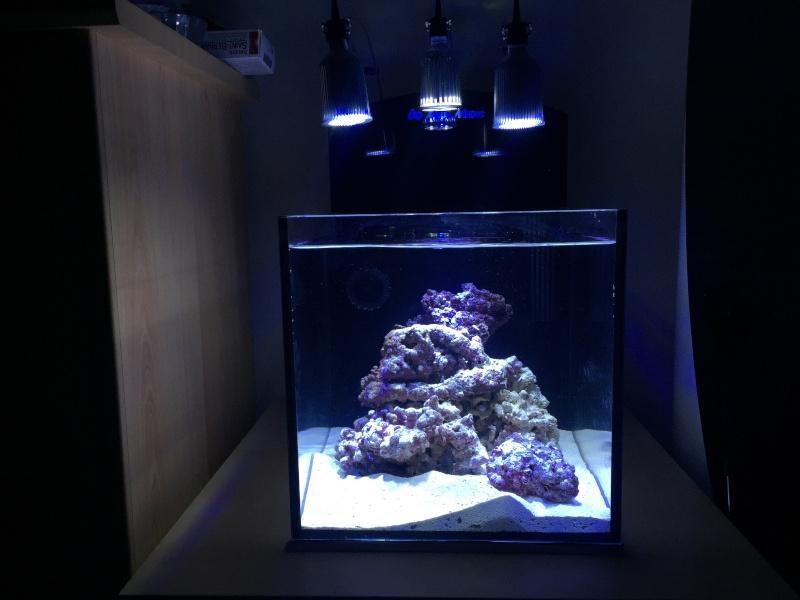 Mon nano yasha aquamedic  Image15