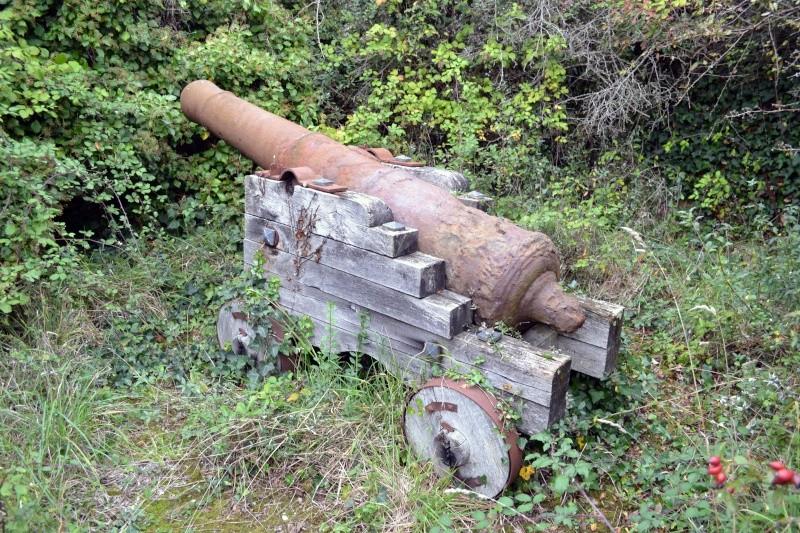 Demande d'aide pour identification d'un canon Dsc_0910