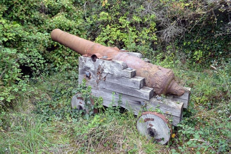 Demande d'aide pour identification d'un canon Dsc_0911
