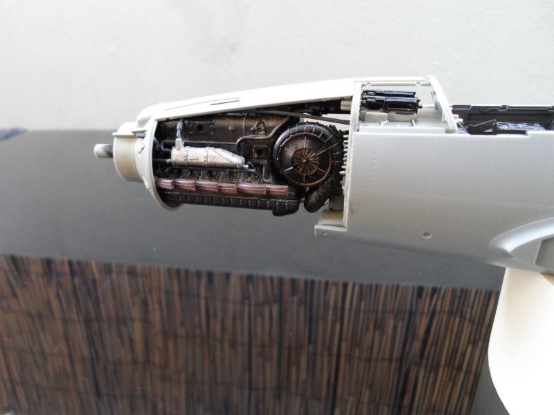Dornier 335 Pfeil/Ameisenbär Hkm 1/32 Sam_3143