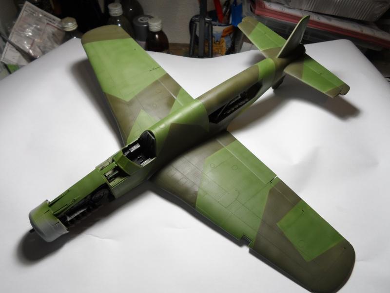 Dornier 335 Pfeil/Ameisenbär Hkm 1/32 Sam_3237