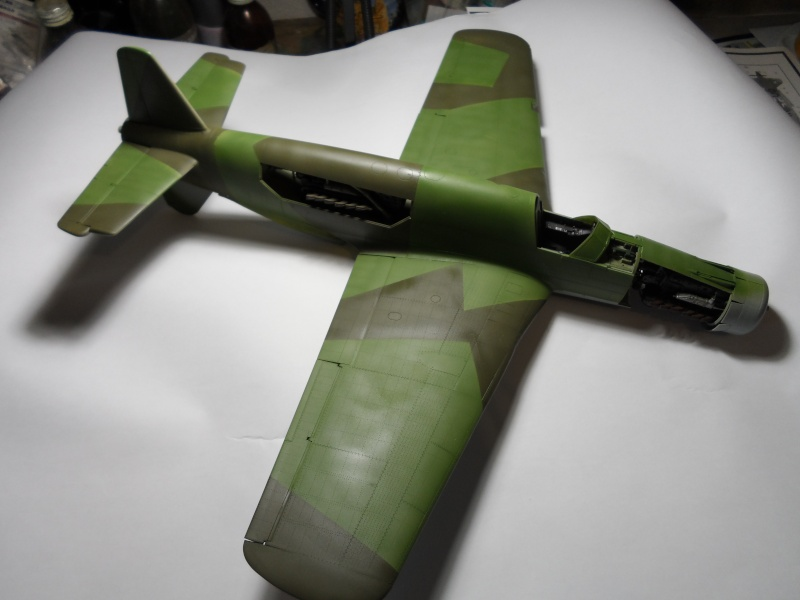 Dornier 335 Pfeil/Ameisenbär Hkm 1/32 Sam_3238