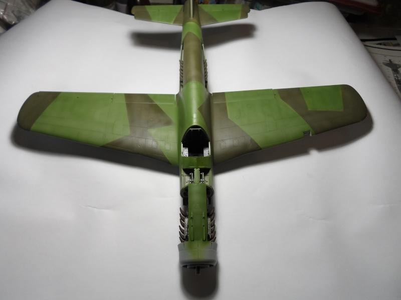 Dornier 335 Pfeil/Ameisenbär Hkm 1/32 Sam_3239