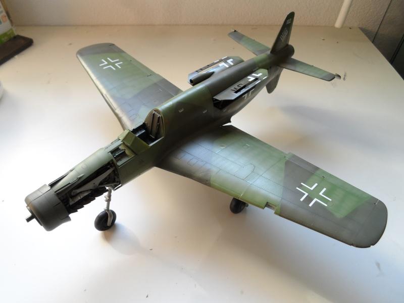 Dornier 335 Pfeil/Ameisenbär Hkm 1/32 Sam_3242