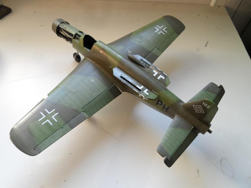 Dornier 335 Pfeil/Ameisenbär Hkm 1/32 Sam_3243