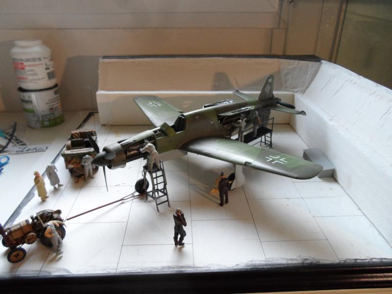 Dornier 335 Pfeil/Ameisenbär Hkm 1/32 Sam_3259