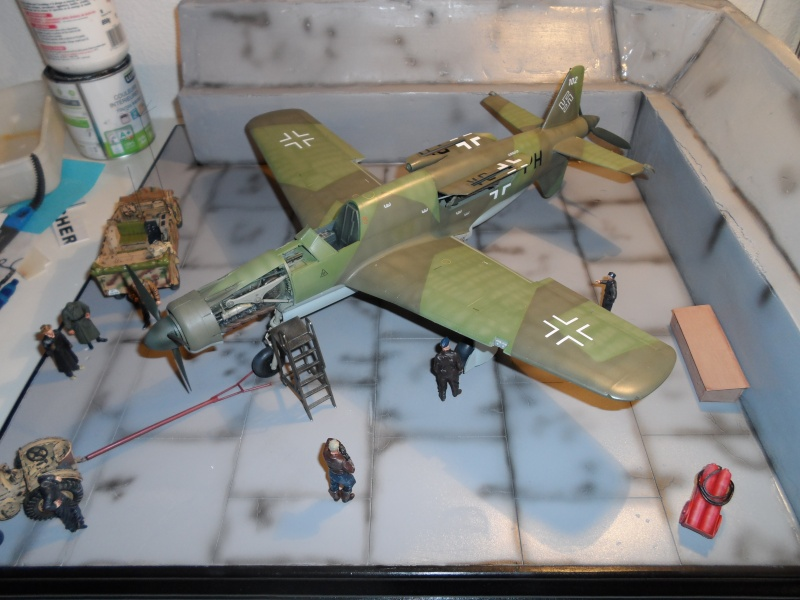 Dornier 335 Pfeil/Ameisenbär Hkm 1/32 Sam_3261