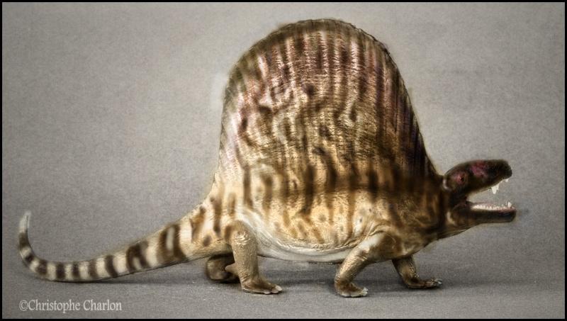 Favorite Prehistoric Life Softmodel Dimetrodon: A walkaround by Kikimalou Repain10