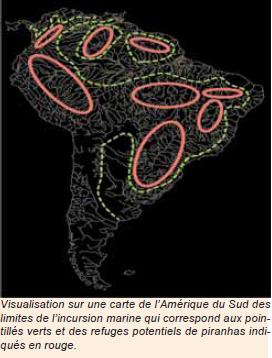 L'origine des piranhas, quand l'Amazonie fut inondée par l'eau de mer   Hh10