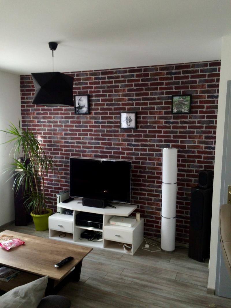 Mur intissé imitation briques 20151010