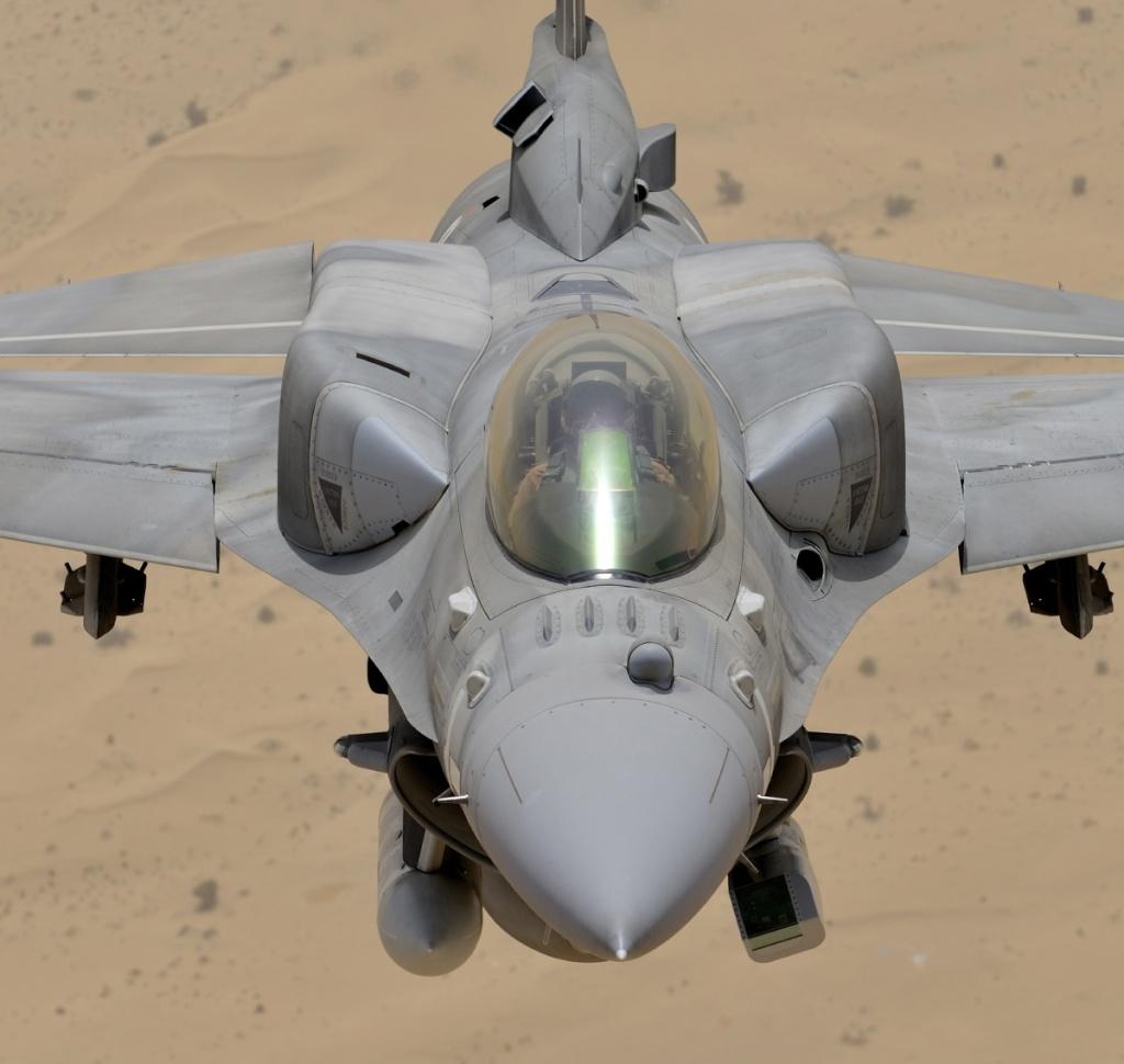 Armée des Emirats Arabe Unis 36_blo10