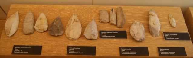Visite du musée de Dijon  Dsc05711