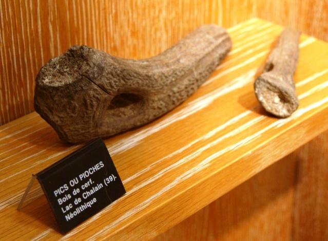 Visite du musée de Dijon  Dsc05718