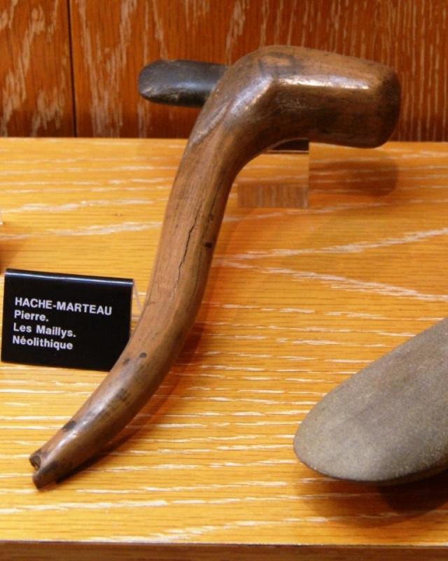 Visite du musée de Dijon  Dsc05719