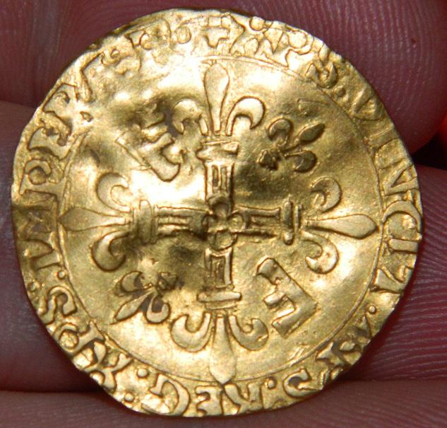 nouvel ecu d'or au soleil Dscn5610