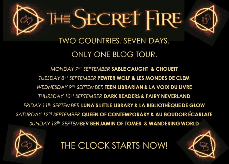 Blog Tour The Secret Fire - Carina Rozenfeld et la littérature Young Adult Blog_t10