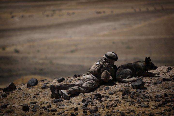 Photos de l'armée américaine  - Page 3 36204_10