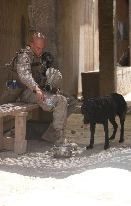 Photos de l'armée américaine  - Page 3 38746_10