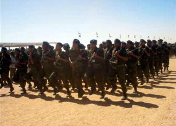 Armée populaire de libération sahraouie (APLS)  60798_13