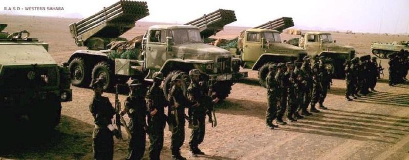 Armée populaire de libération sahraouie (APLS)  62207_10