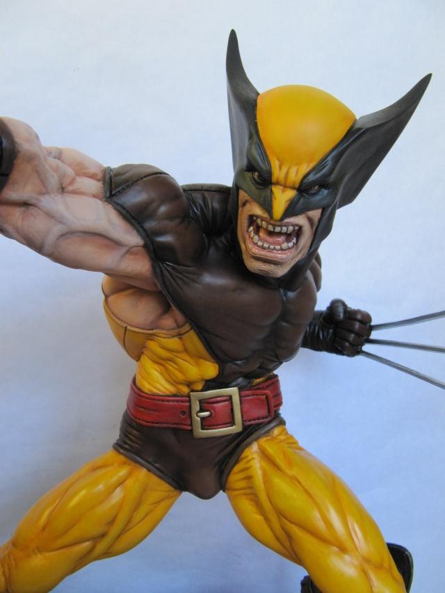 Dio Wolverine 1/4 . Img_7819