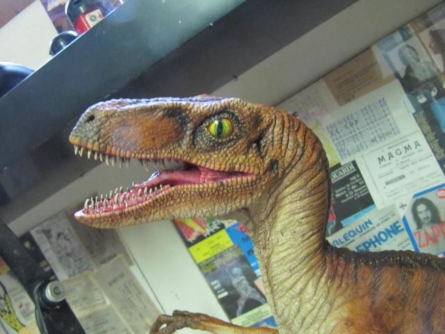 Vélociraptor Jurassic Park. Img_8015