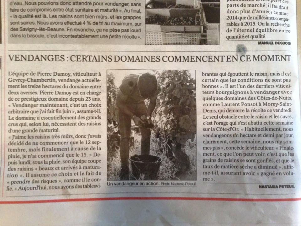 Vendanges 2015 - Page 2 Damoy10
