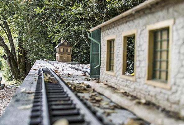 Les petits trains de St André: le réseau de dehors  Sdim0112