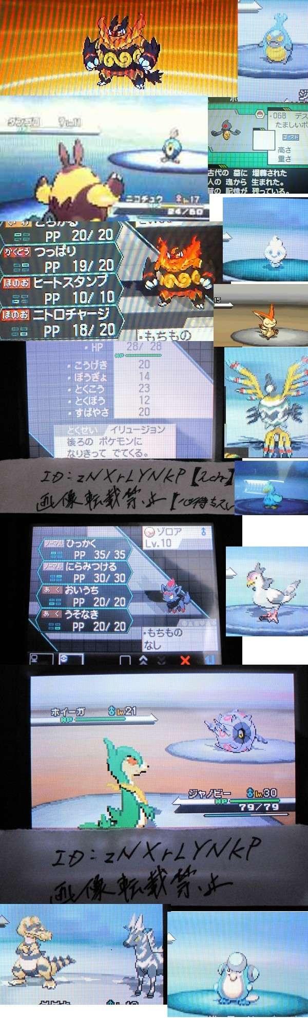 Pokémon Noir et Blanc : screen en pagaille 37411